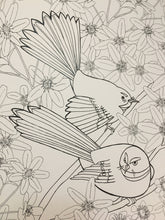 Colour me Kiwi - Colouring Book