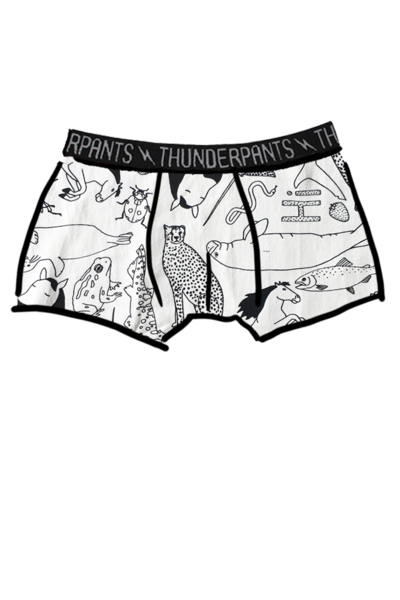 Men's Boxers - Colour Me Lorien Zoo