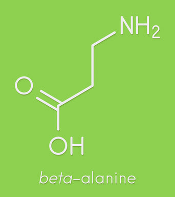 Fat burner AM supplemment Beta-Alanine