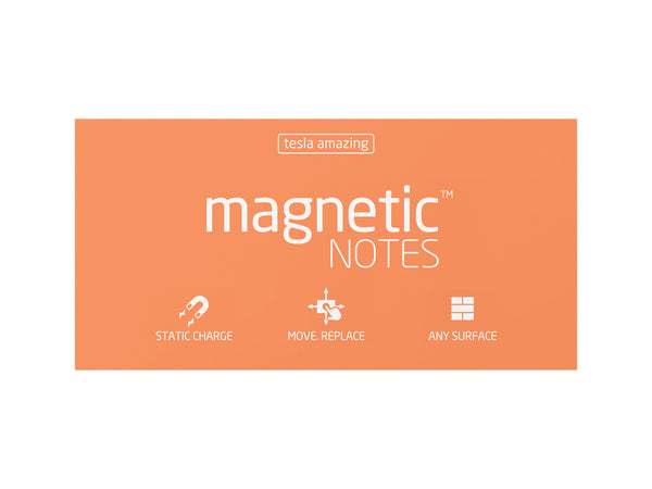 Magnetic Notes / Size-L / Peachy
