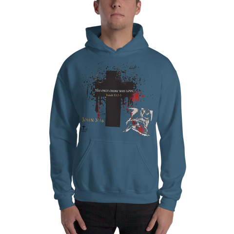 His Only Crime (HOODED SWEATSHIRT) 4 colors