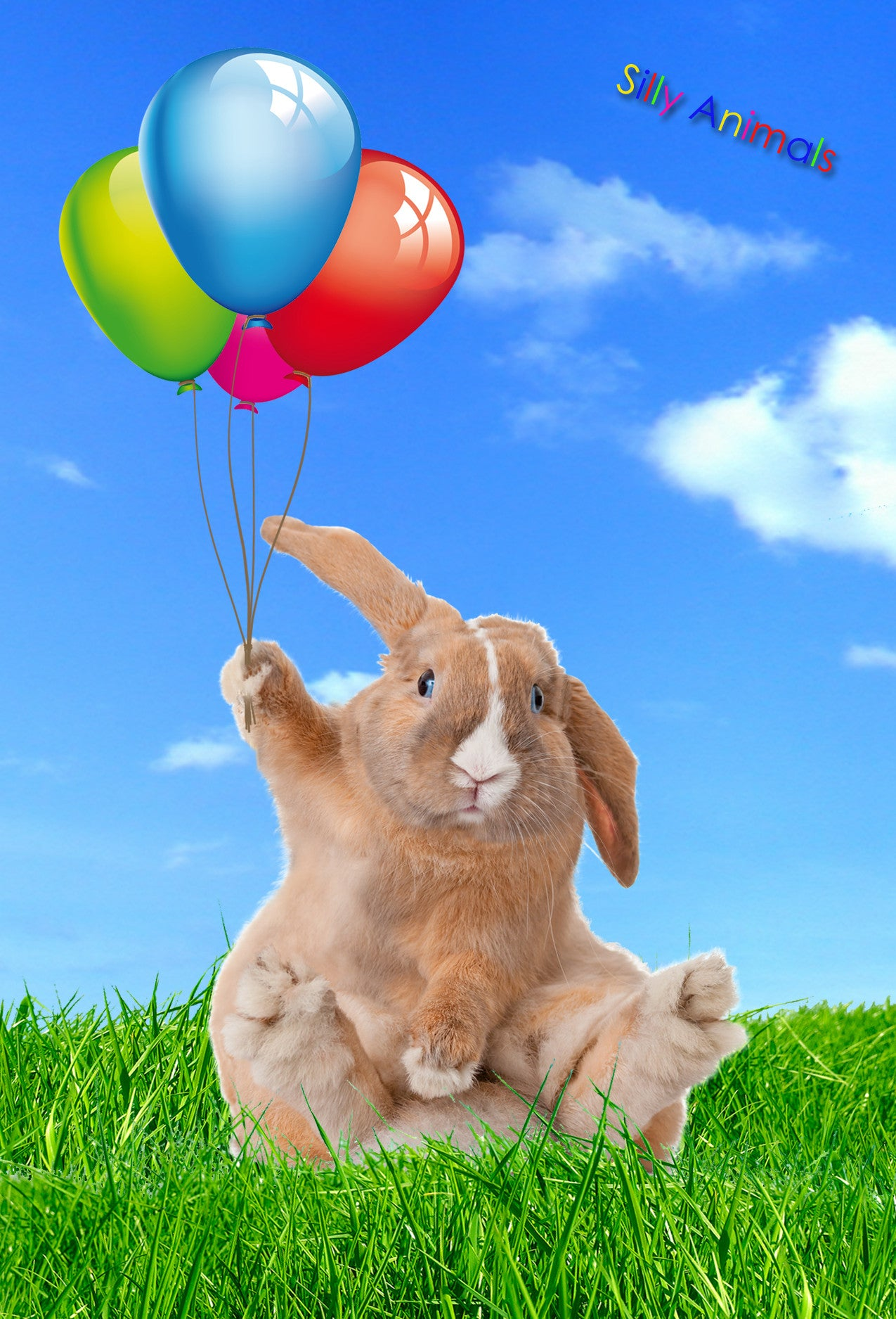 Happy Rabbit 3D Magnet
