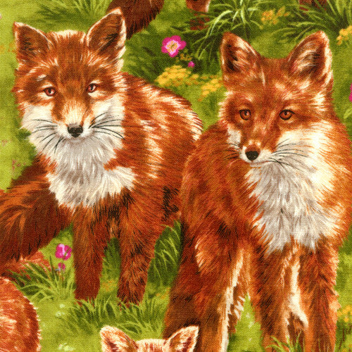 Fox Fabric - Squirrels and More