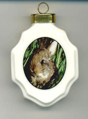 Bunny Porcelain Ornament - Squirrels and More