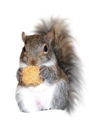 Zupreem Primate Dry Diet - Squirrels and More - 1
