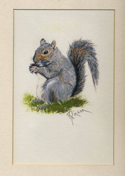 Squirrel Matted Print - Squirrels and More