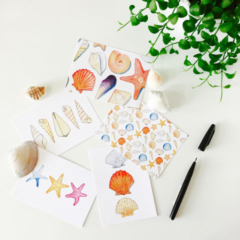 Seashell Postcards (set of 10)