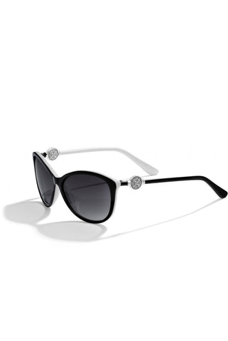 Brighton - Ferrara Sunglasses in Black/white (12623)