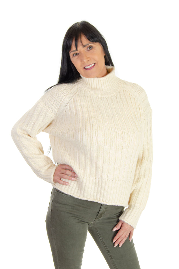 Leona Ribbed Turtleneck