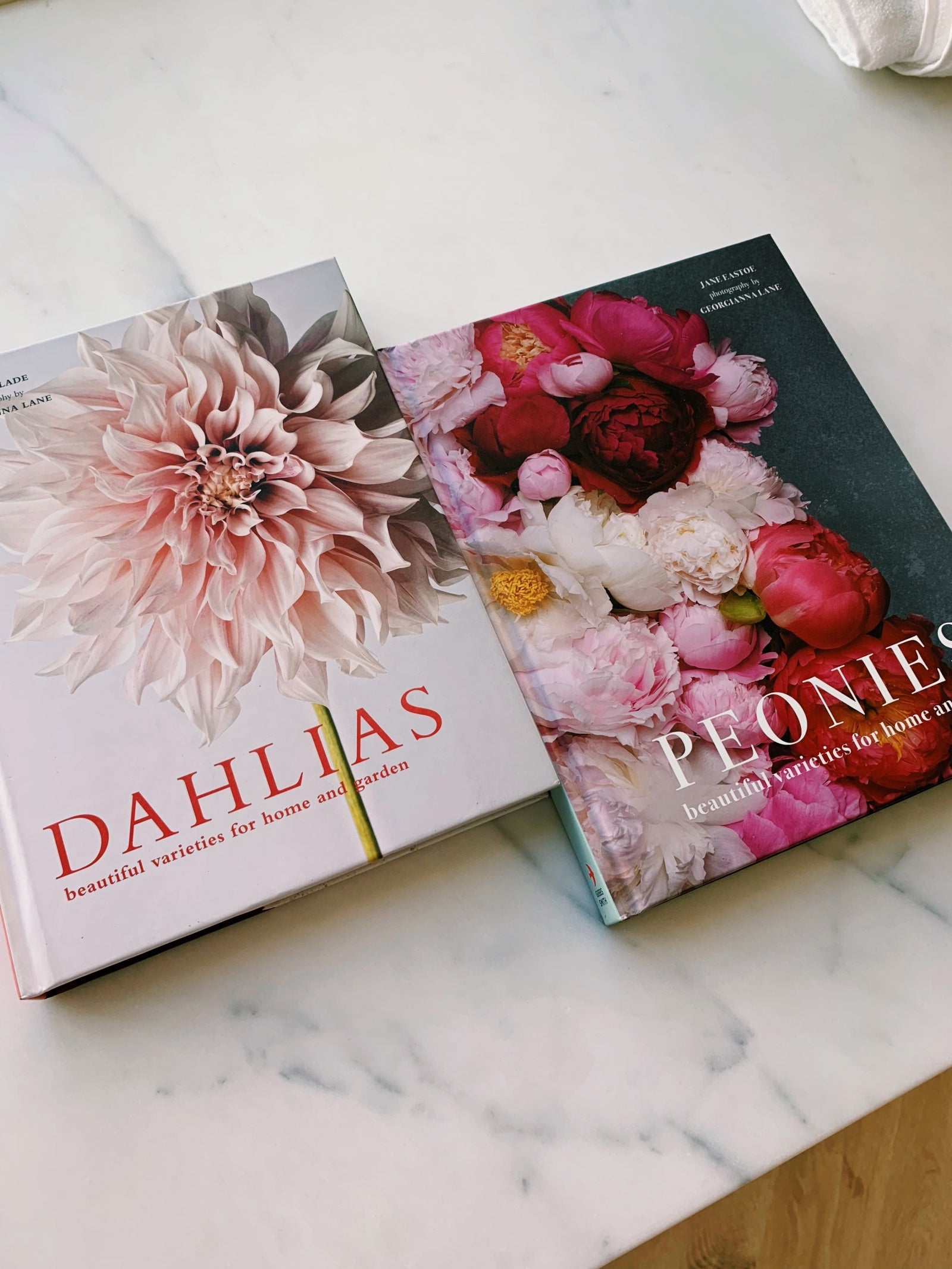Roses Coffee Table Book