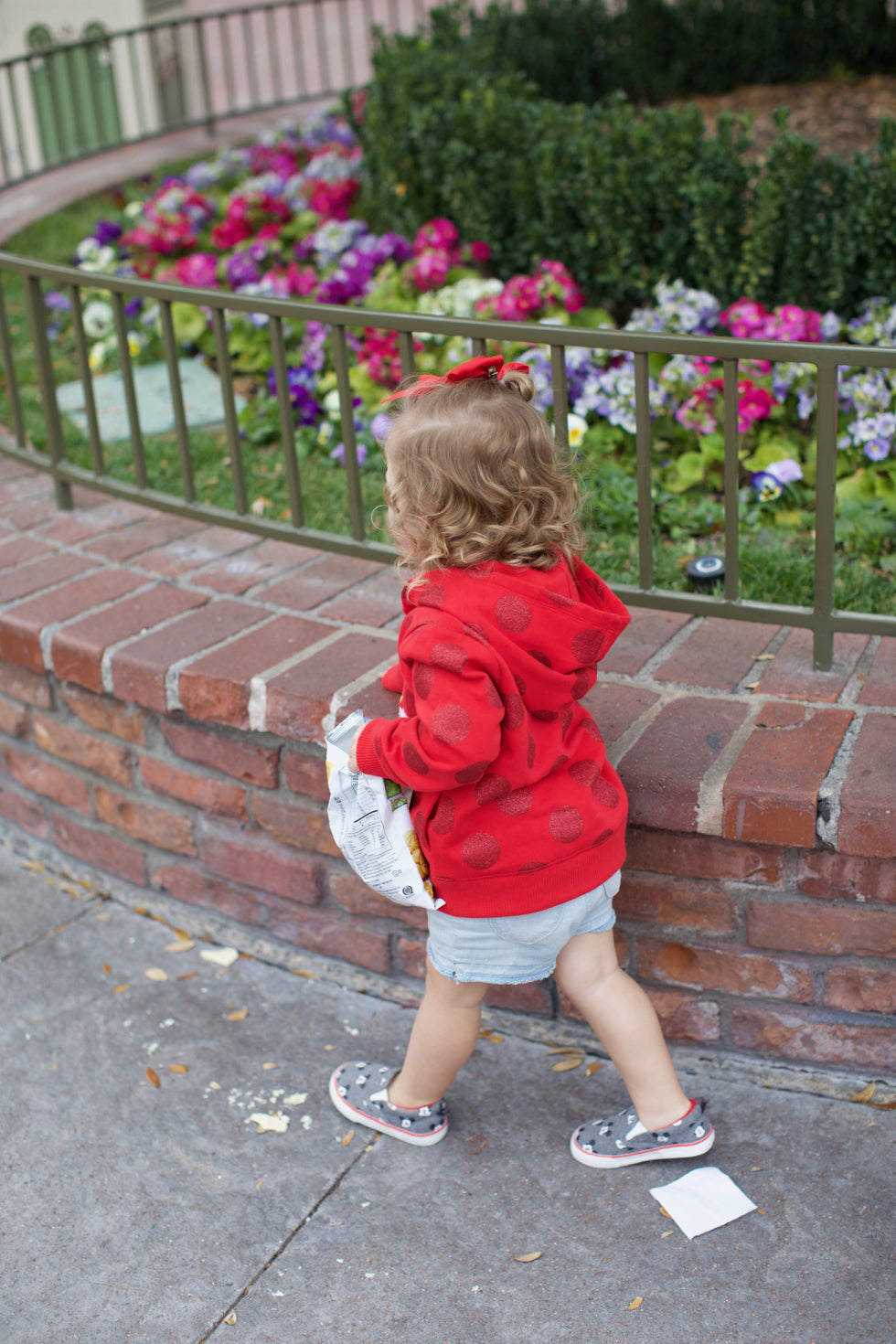 family-disney-land-trip-tips - 2