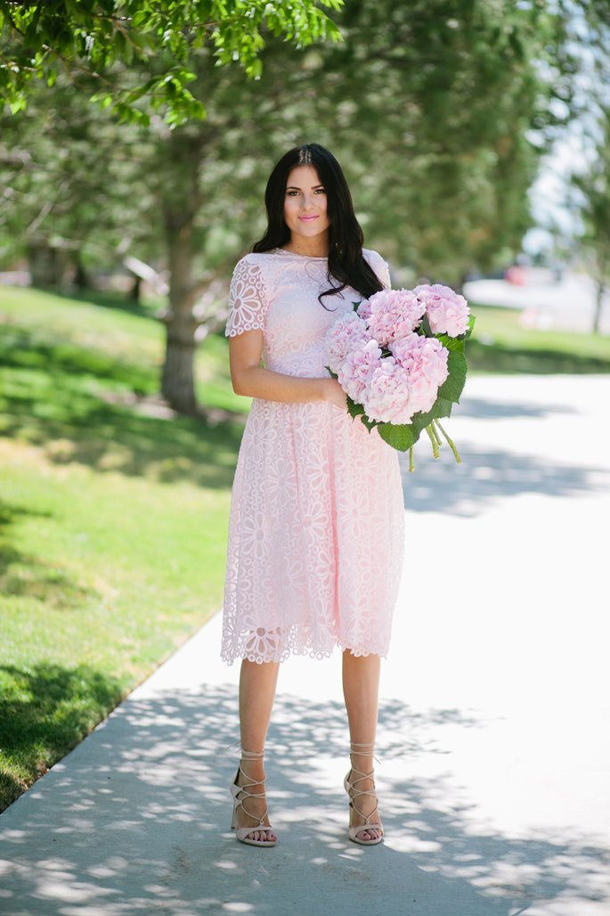 rachel-parcell-lace-fit-and-flare-dress