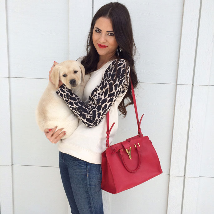 Rachel Parcell Puppy and Sweater