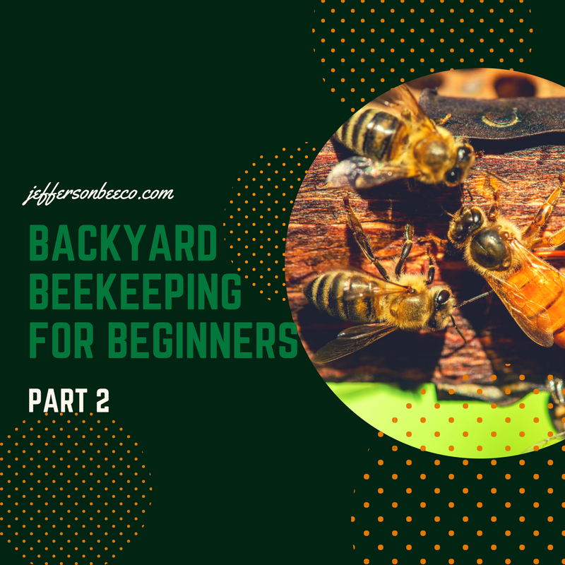 Backyard Beekeeping For Beginners   Part 2   Redding