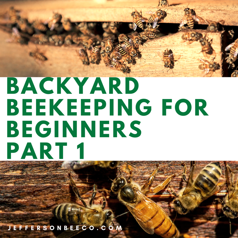 Backyard Beekeeping For Beginners   Part 1   Redding