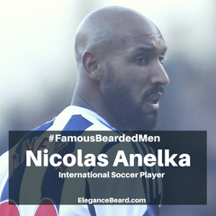 Nicolas Anelka - International Soccer Player