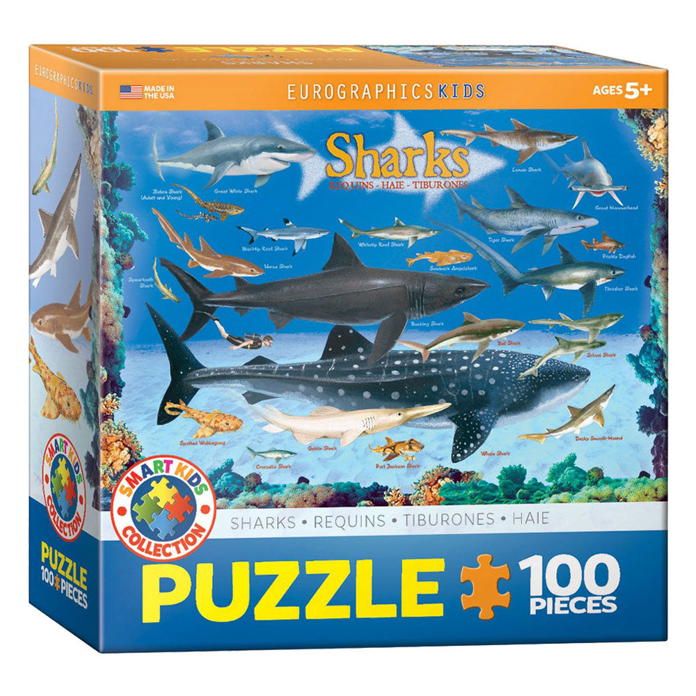 100 Piece Jigsaw Puzzle made from Recycled Paper depicting Illustrations of Various Sharks of the Ocean and their Relative size to Each Other and a Human in its original packaging by EuroGaphics.