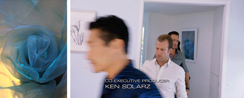 "Art on ""Hawaii Five-0"""
