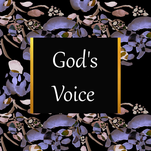 book God's Voice, illustrated scripture