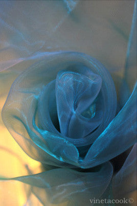 blue rose, contemporary art, abstract photography, for sale