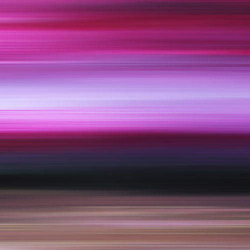 magenta art, pink photography, print for sale, square art to buy