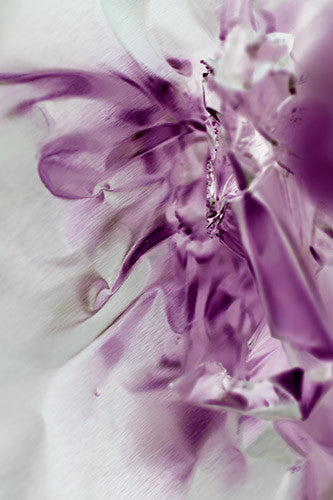 abstract photography, purple photography, luxury art for interior design