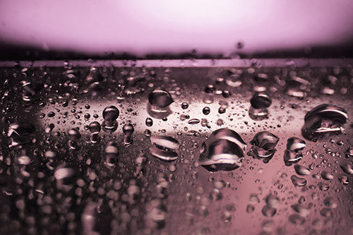 purple abstract photography, purple art, abstract photography
