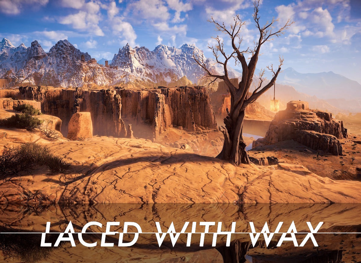 Laced With Wax Point and shoot: Bringing video game photo modes into focus