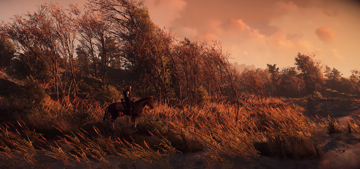 The Witcher 3: Wild Hunt; image courtesy of Casablanca L on Flickr