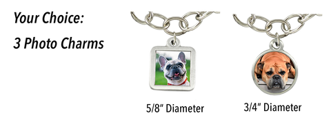 photo charms for pet lovers sizes and shapes