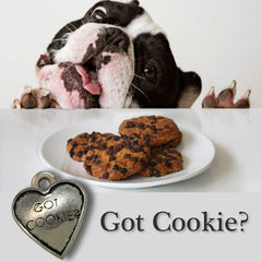 Got Cookie? Dog Charm