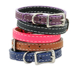 pet memorial leather wristband