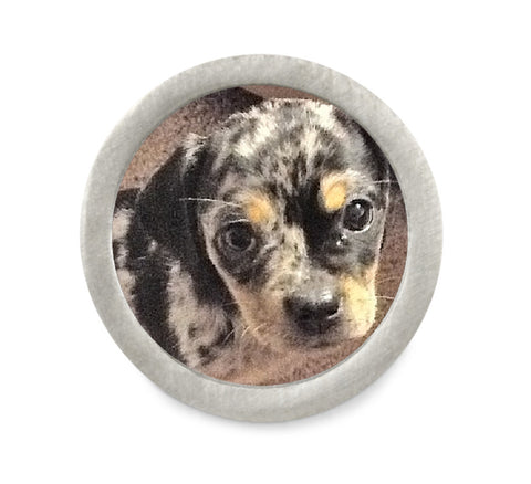 round photo charm for dog bracelet