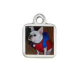 Extras - Small Square Photo Charm for Dog Charm Bracelet - Customer's Product with price 10.00 ID VW_4Nug5rt0vb1OgscEg43ex