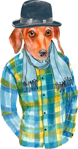 Ox Bow Decor - Dashing Dachshund Hand Towel/White