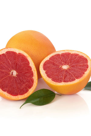 Dwarf Ruby Red Grapefruit Seedless Juicy Flavorful Fruit Citrus Tree Plant (Cant Ship AZ CA LA TX)