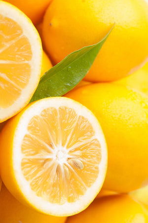 Meyer Lemon Tree, Orange Hybrid, Ever Bearing Citrus (Excludes: CA,TX,LA,AZ)