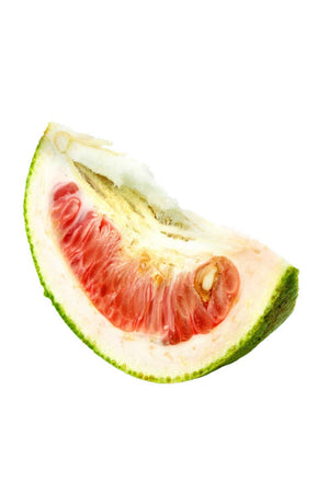 Red Shaddock Pomelo Tree, Chinese Grapefruit Citrus (Excludes: CA,TX,LA,AZ)