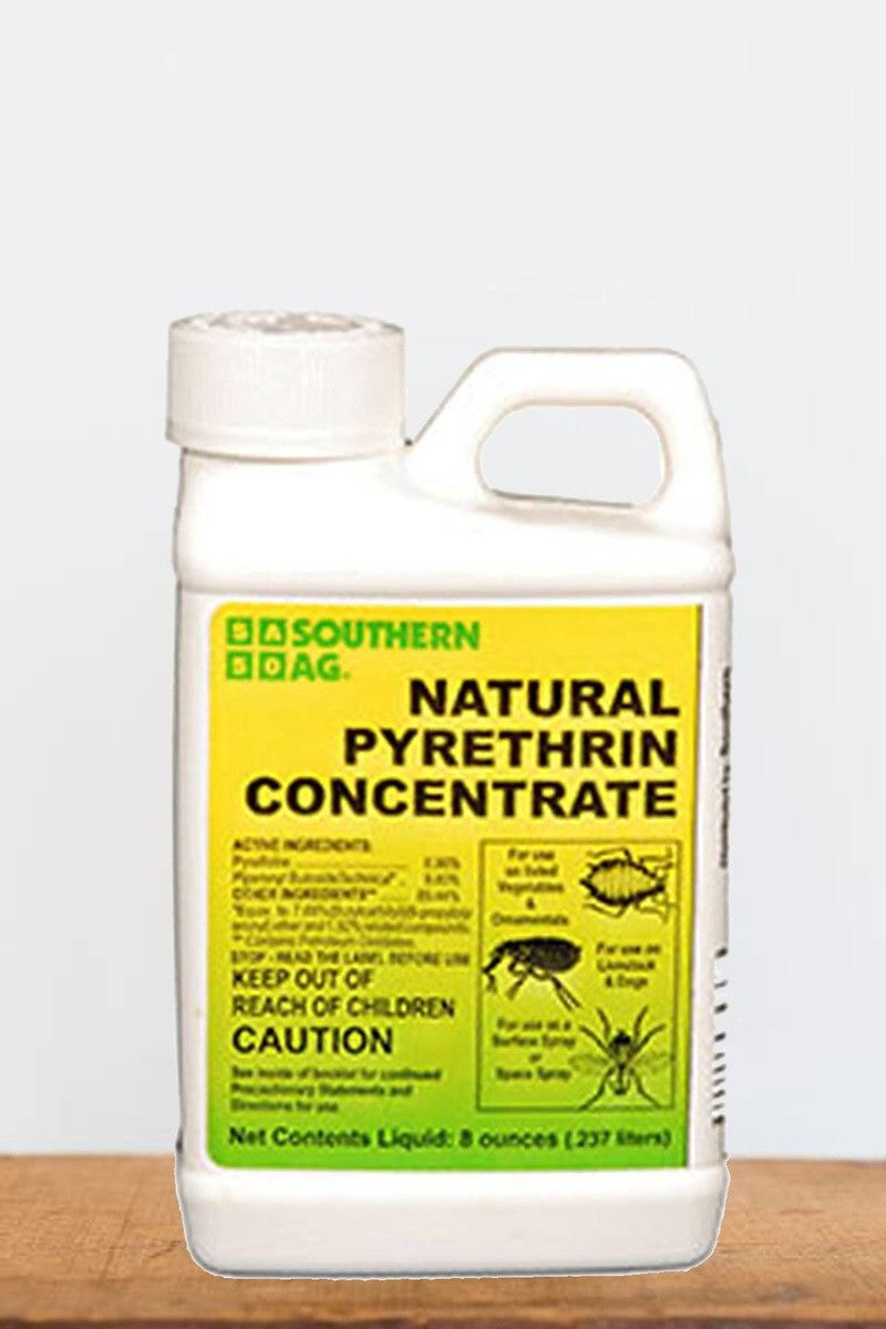 Southern Ag Natural Pyrethrin Concentrate Organic Insecticide, 8 OZ Size: 8 OZ