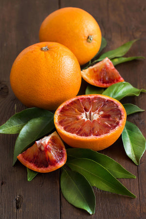 Tarocco Blood Orange Tree, Seedless Citrus (Excludes: CA,TX,LA,AZ) for $ 49.95 at Root 98 Warehouse