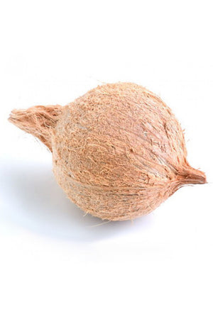 Coconut Husks for Pooja Puja Festival (Excludes Ca), Size: 3 Pack