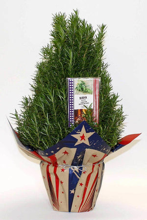 "Hardy Rosemary Tree, American Glory Wrap, BBQ Cookbook, Size: 6.5"" pot"