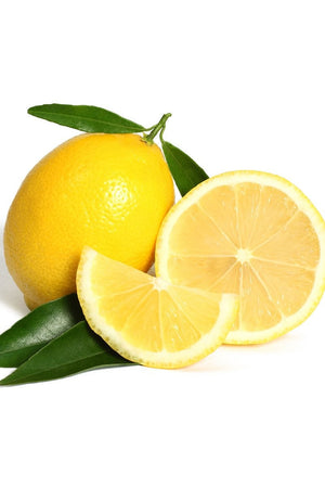 Bearss Lemon Tree, Citrus (Excludes Ca, Az, La, Tx), Size: 1 Gallon CitraPot