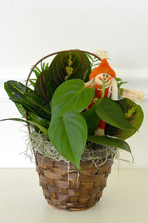"Fall Wicker Basket 5"", Centerpiece Decoration for Autumn Halloween (Excludes Ca, Az) Size: 1 Planter"