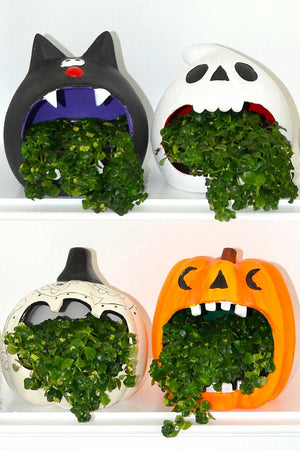 "Halloween Howlers 5"" Assorted, Fall Centerpiece Decoration for Autumn (Excludes Ca, Az) Size: Ghost Planter"