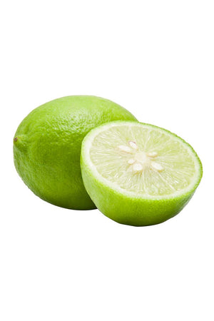 Mexican Key Lime Tree, Semi-Dwarf Citrus (Excludes Fl, Az, Tx)