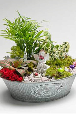 "Garden of Weedin' Galvanized Fairy Garden, 8"", (Excludes Ca, Az) Size: 1 Planter (Live Plant)"