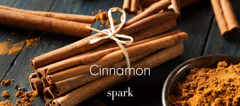 Cinnamon Scented Soy Candles
