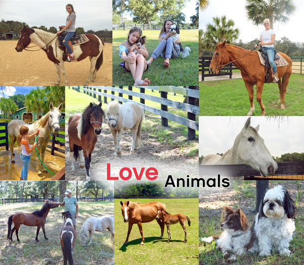 Beautifulife - Love Animals