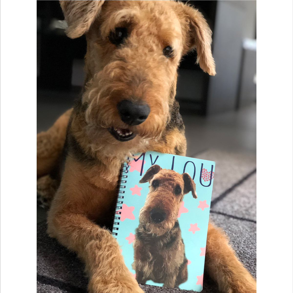 Custom notebook with pop art of airedale